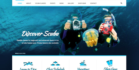 ny web design